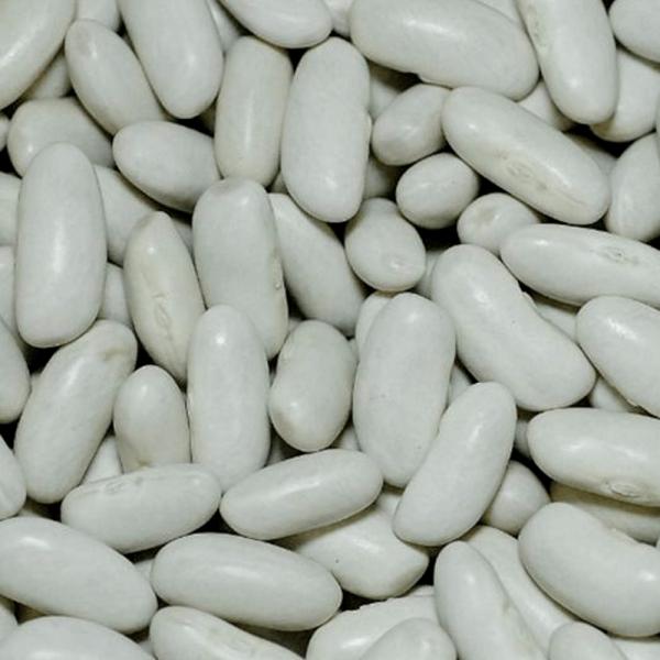 feijao-branco